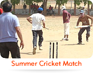 Summer Cricket Match